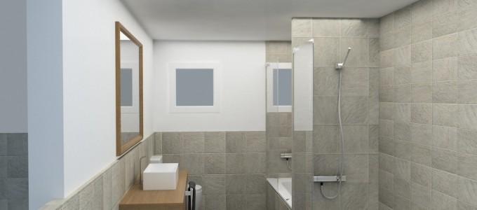 Ideas para la reforma del baño, ¿Plato de ducha o bañera?